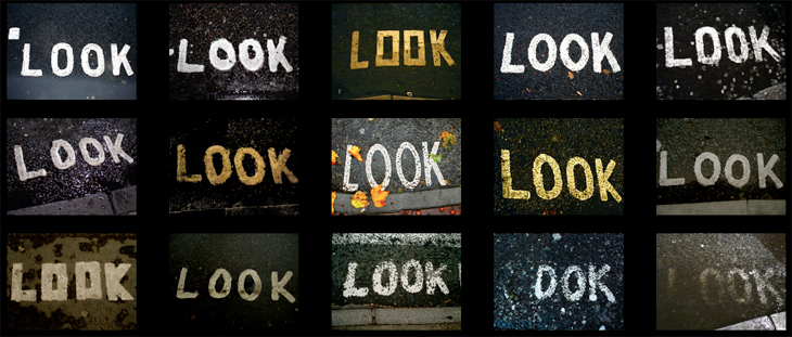 LOOK by Nick Scammell