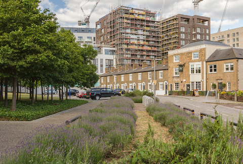 Walking the Greenwich Peninsula - Gill Golding